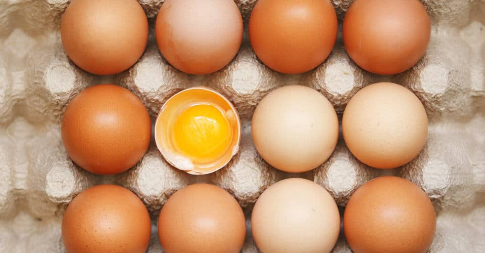 eggs in egg tray