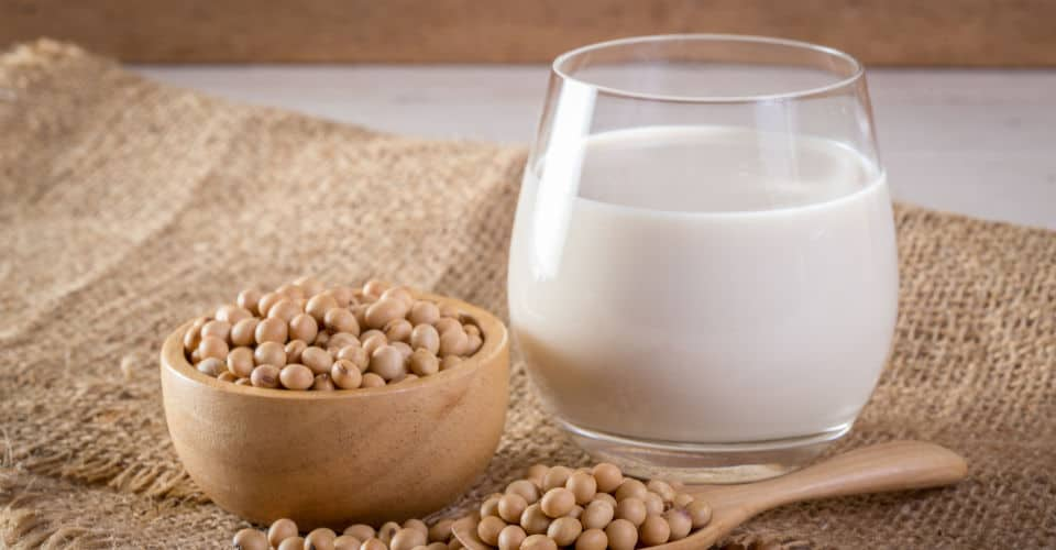 soy milk and soybeans