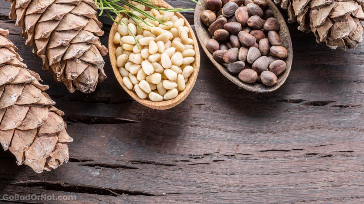 Do Pine Nuts Go Bad