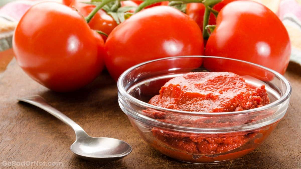 Does Tomato Paste Go Bad