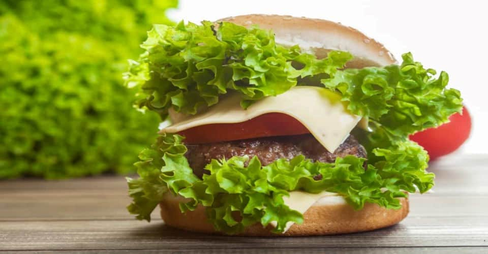 burger with lettuce