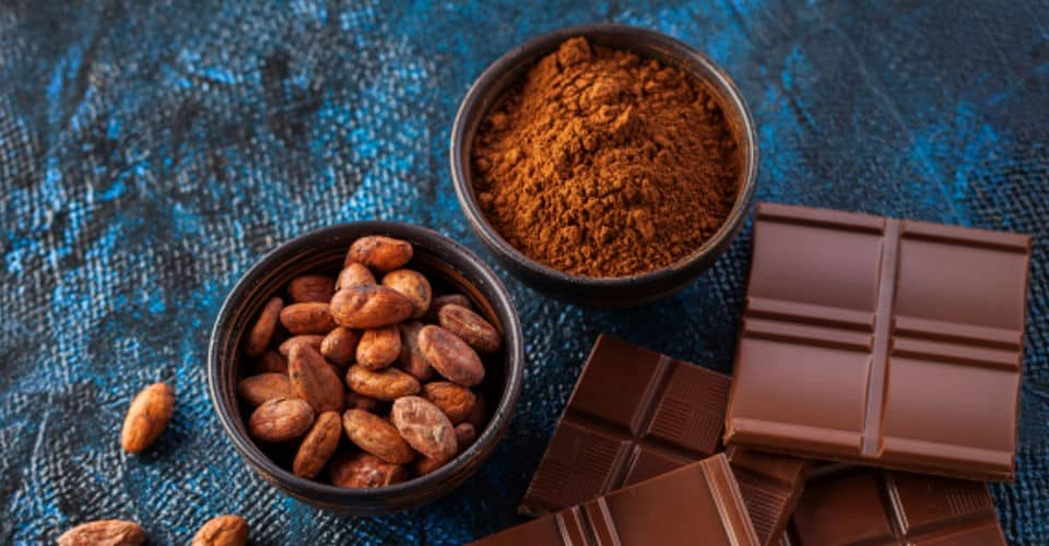 cocoa powder cocoa beans and chocolate bars