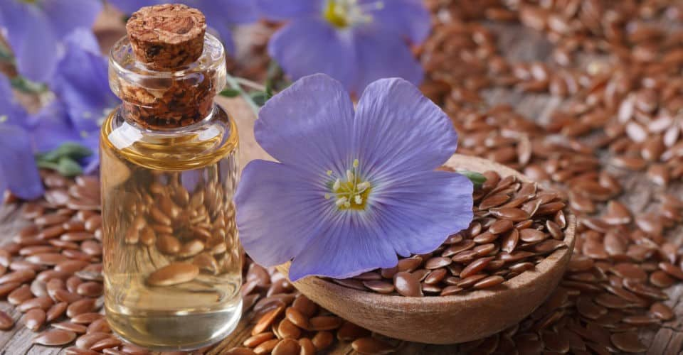 flax seeds flaxseed oil and flax flowers