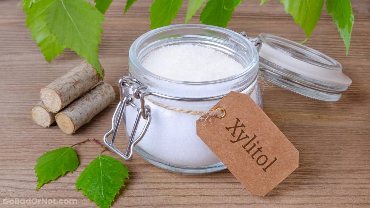 Does Xylitol Go Bad