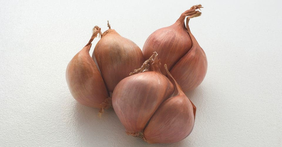 some shallots